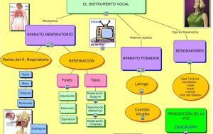 Mapa la veu